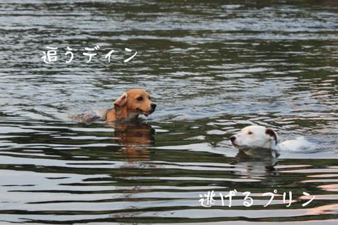 0727多摩川最高5.jpg