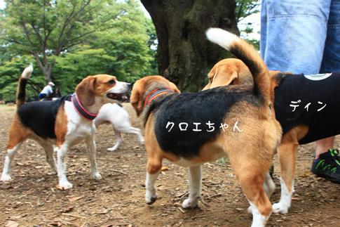 1003代々木公園4.jpg