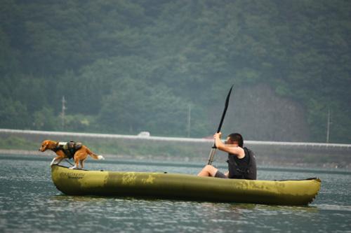 20110812お盆西湖キャンプ54.jpg