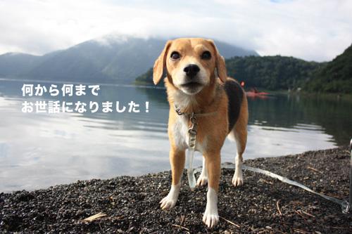20110827本栖湖キャンプ58.jpg
