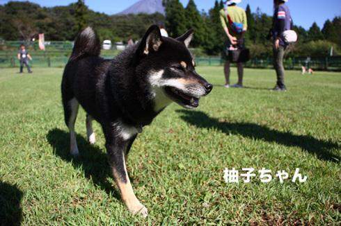 20110918朝霧オフ会41.jpg