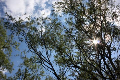 20110923西湖水没キャンプ21.jpg
