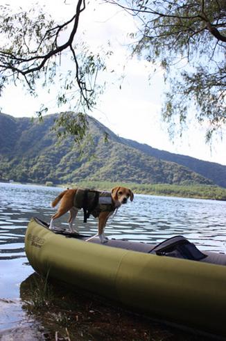 20110923西湖水没キャンプ24.jpg