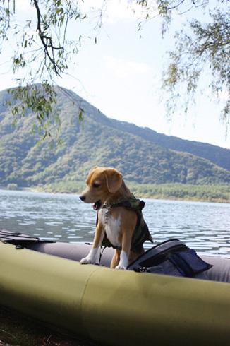 20110923西湖水没キャンプ25.jpg