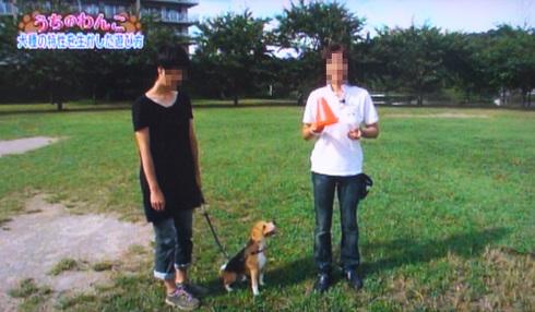 20111001うちのわんこ13.jpg