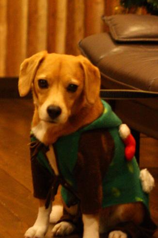 20111203クリスマス旅行25.jpg