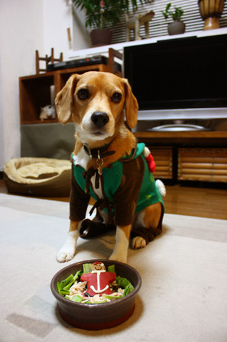 20111224クリスマス2.jpg
