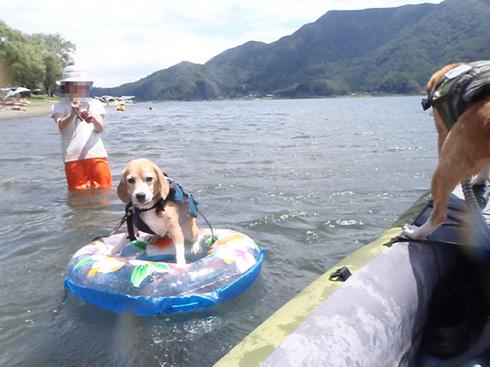20120804西湖6.jpg