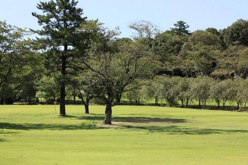 20120819森林公園2.jpg