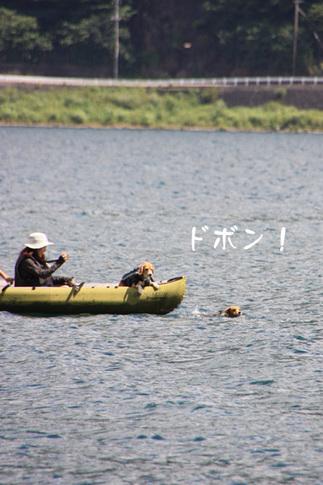 0807西湖キャンプ40.jpg