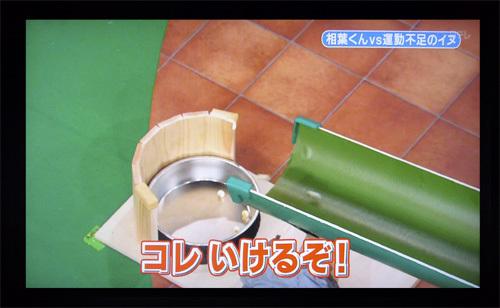 200110709志村どうぶつ園19.jpg