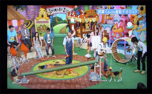 200110709志村どうぶつ園23.jpg
