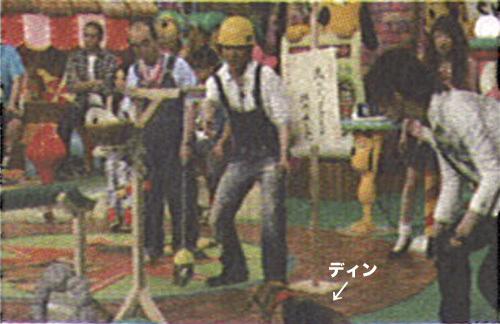 20110708ザテレビジョン2.jpg