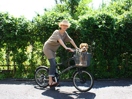 20110802ボクの自転車1.jpg