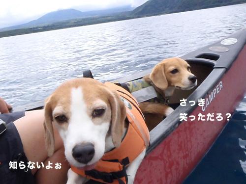 20110827本栖湖キャンプ11.jpg
