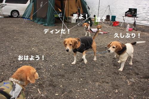 20110827本栖湖キャンプ3.jpg