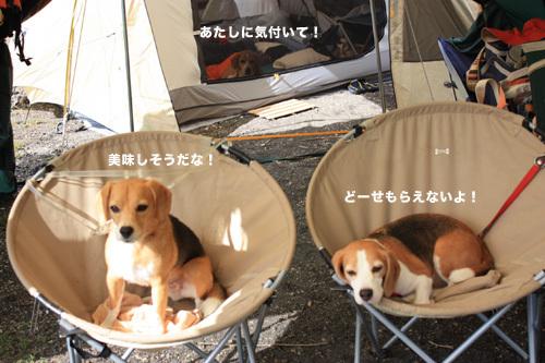 20110827本栖湖キャンプ54.jpg