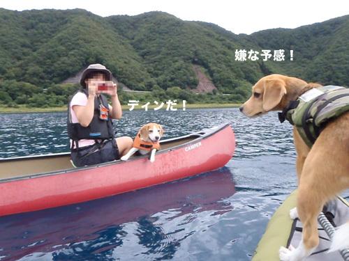 20110827本栖湖キャンプ9.jpg