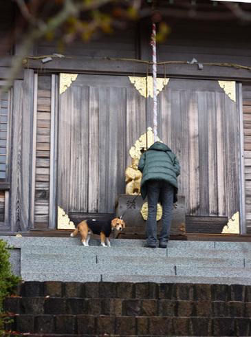 20111203クリスマス旅行17.jpg