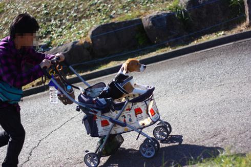 20111203クリスマス旅行77.jpg