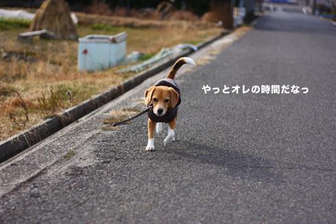 20120102パパ実家7.jpg