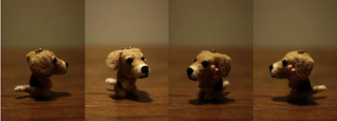 20120220羊毛ディン5.jpg