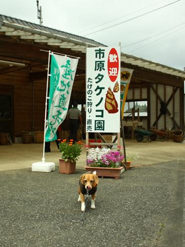 20120421誕生日旅行16.jpg