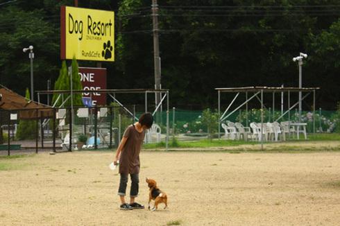 20120714犬山ラン15.jpg
