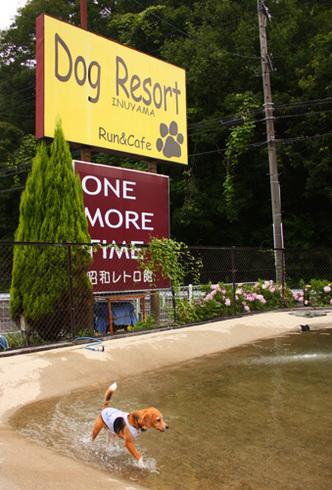 20120714犬山ラン5.jpg